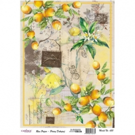 LEMONS & STAMPS RICE PAPER