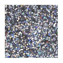 DIAMOND GLITTER 40GRM - SILVER HOLOGRAM