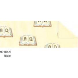 A4 TINTED CARDBOARD 220G - BIBLE