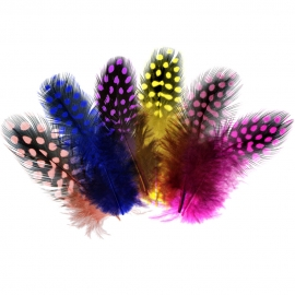 GUINEA FOWL FEATHERS - ASSORTED