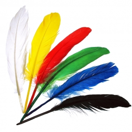 INDIAN FEATHERS - ASSORTED